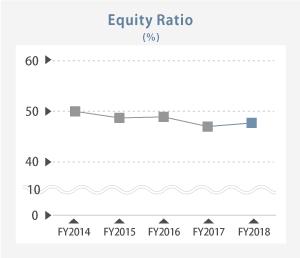 Equity Ratio image