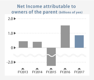 Net Income image